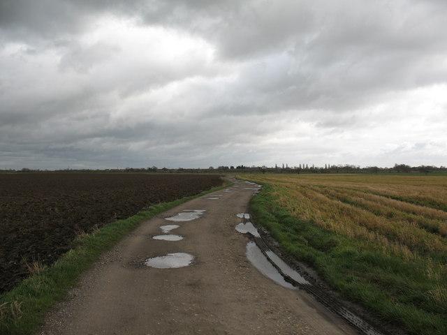 Ings Lane, Wistow Lordship