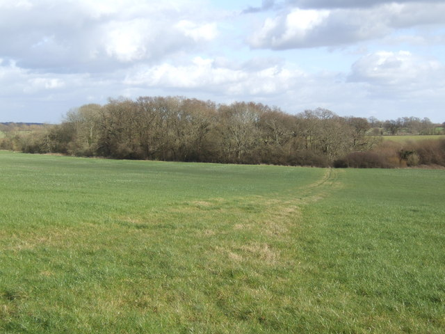 Bridleway across the field