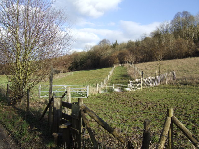 Footpath to West Marden