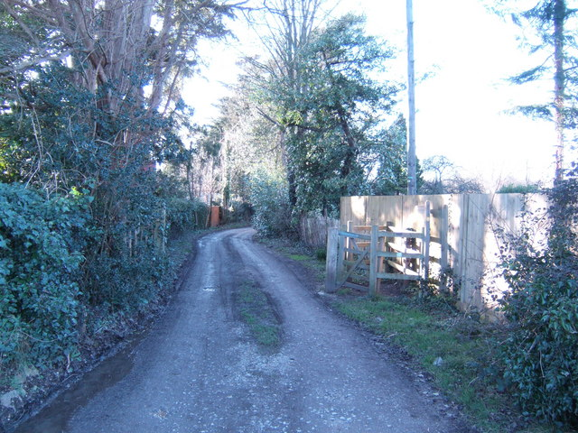 Monarch's Way towards Horndean