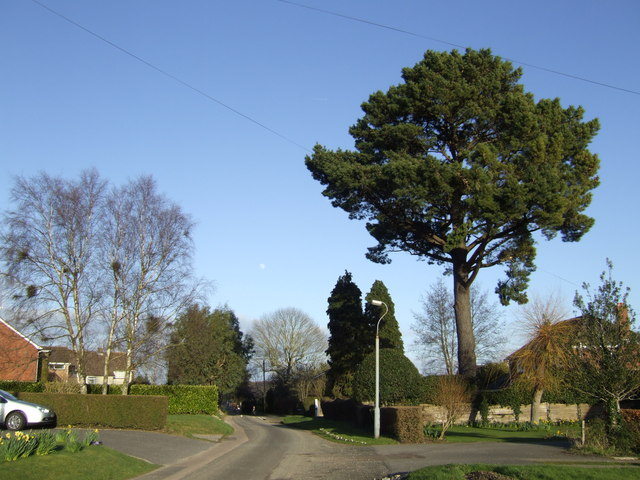 Wellsworth Lane