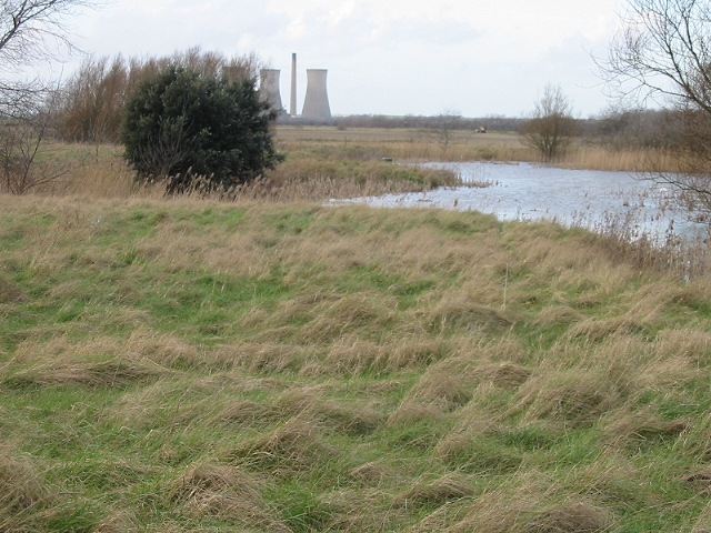 Small lake in rough pasture