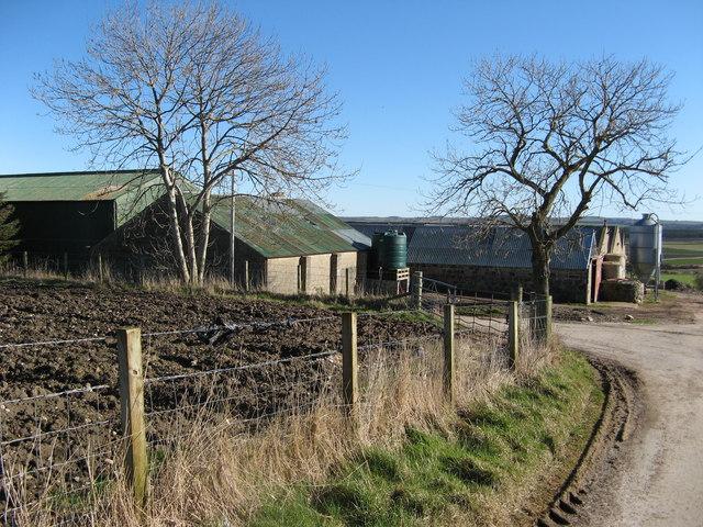 Drochedlie Farm near Fordyce