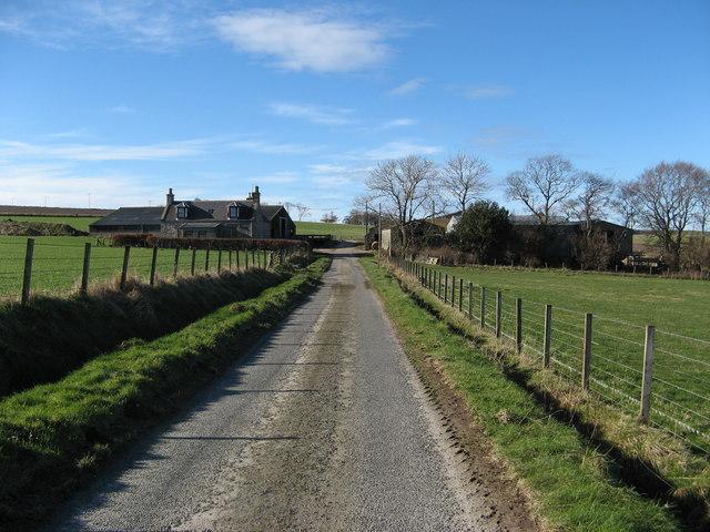 Little Dytach near Fordyce