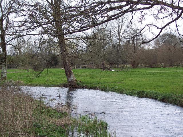 River Ebble, Stratford Tony