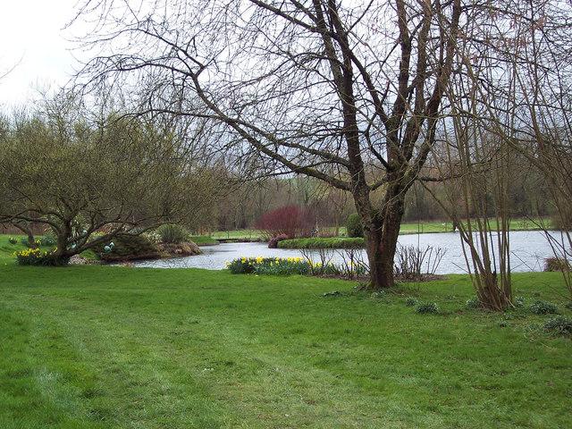 Pond at Stratford Tony