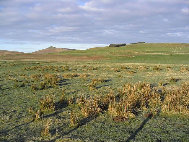 Hill farmland