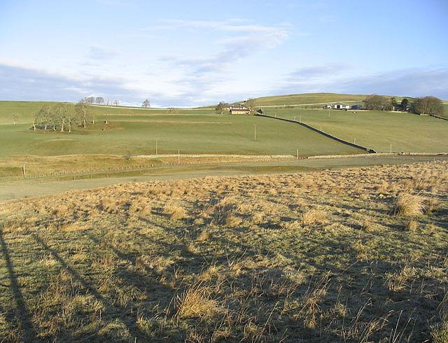 Rough grazing field