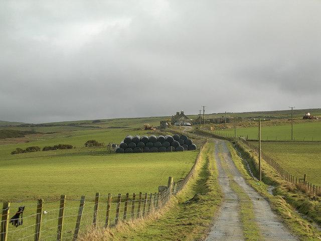 Ballitarsin Farm