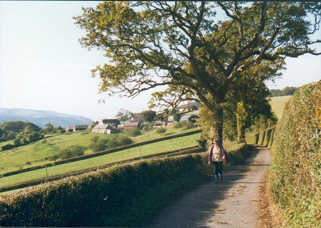 Country Lane near East Lynch