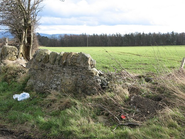 Remains of a dyke