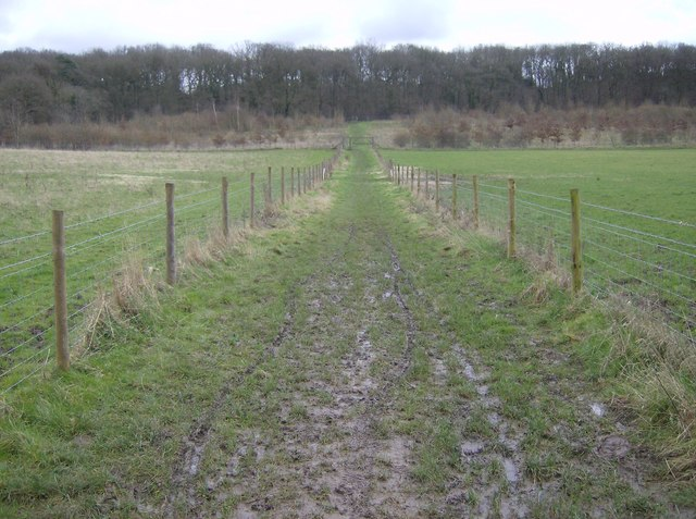 Footpath to Rotten Row