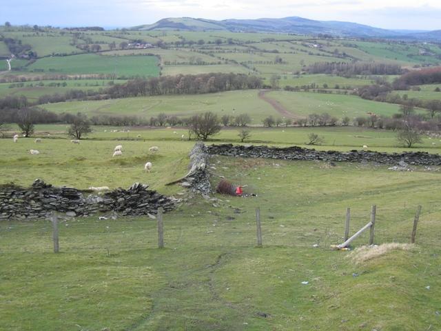 Stone Walls below Moel y Faen