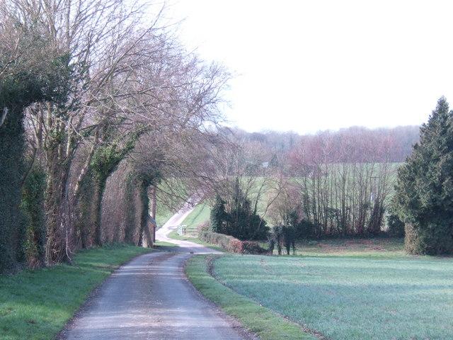 Road to North Farm
