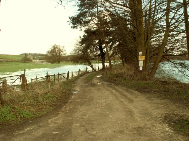 The approach to a lake at Shotford Heath