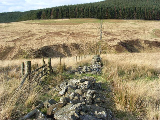 Between Breckonside Hill and Pinnacle Hill