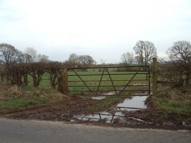Muddy gateway