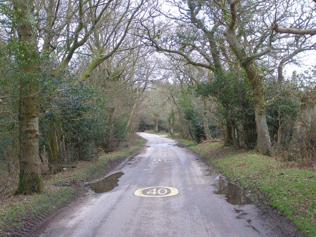 Cripple Gate Lane, Beaulieu Estate