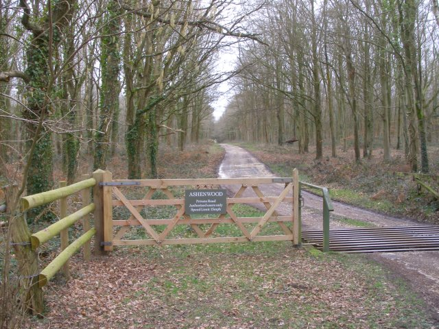 Private road to Ashenwood, Beaulieu Estate