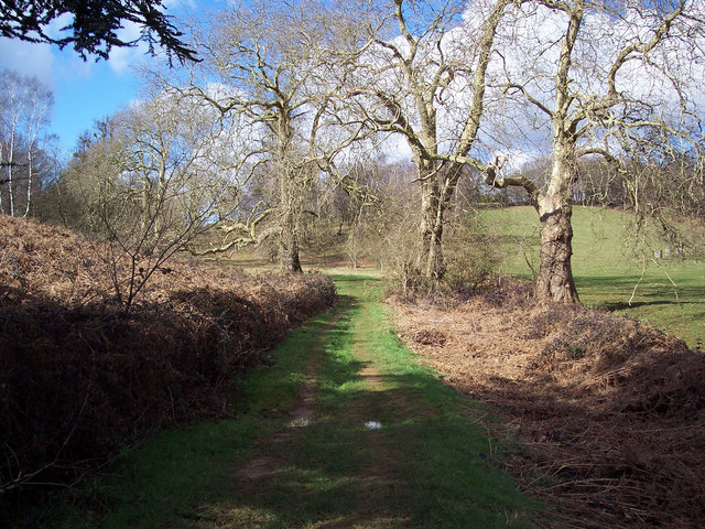Footpath in Cowdray Park