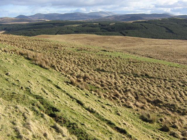 Dersalloch Moorland