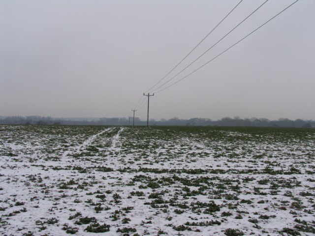 Field and cables