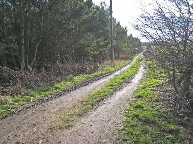Farm road at Kimblesworth