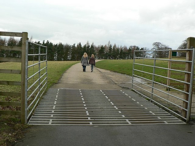 Gate and Cattle Grid, Harewood Estate