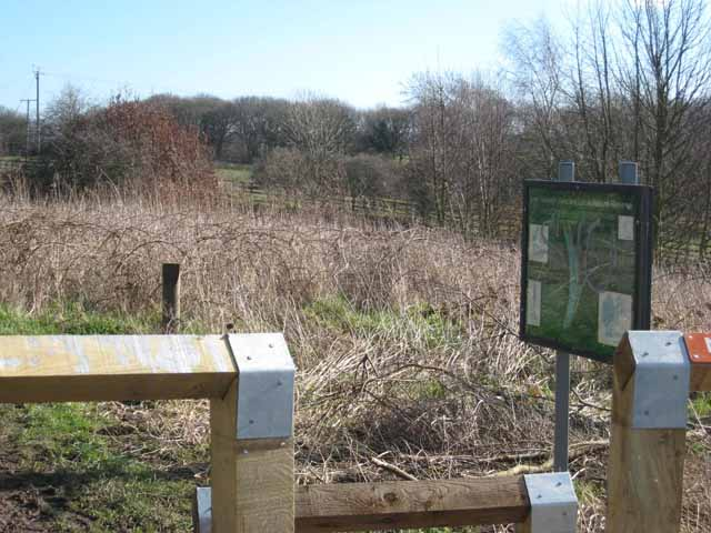 Low Newton Junction Nature Reserve