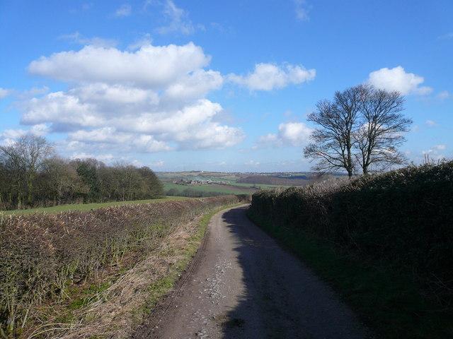 Owler Car Lane