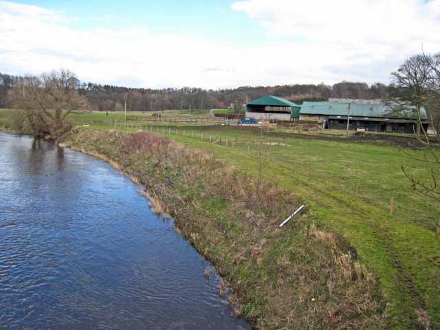 Low Cocken Farm and the River Wear