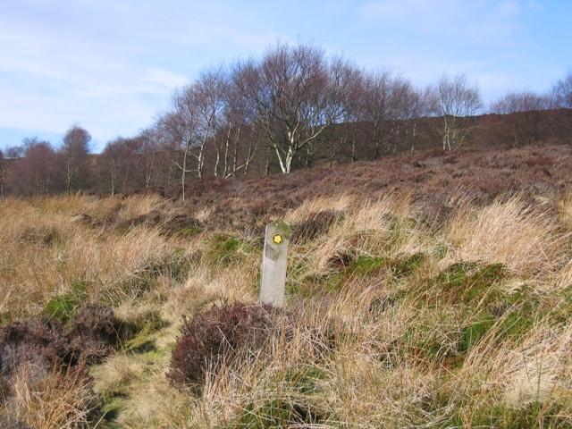 Footpath Sign on the Moors near Ffynnon Thomas