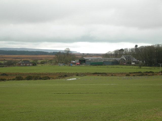 Mullindry Farm
