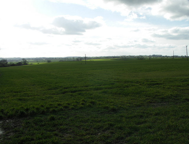 Open Countryside
