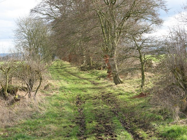 Purves Hall to Mersington track.