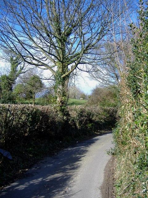 Lane, near Pentwyn farm