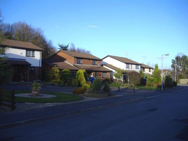 Springfield Lane, Rhiwderin