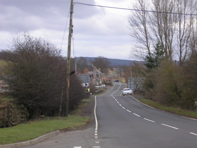 The Coldstream Road