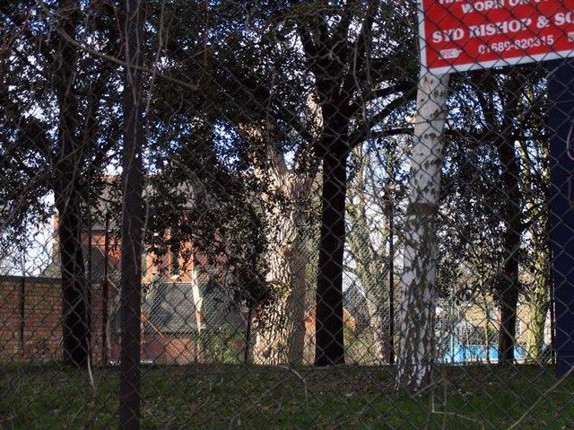 Catholic Apostolic Church through wire netting