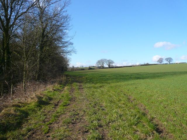 View  across fields from Sloade Lane Footpath