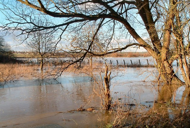 River Thame in Flood at Chearsley 18