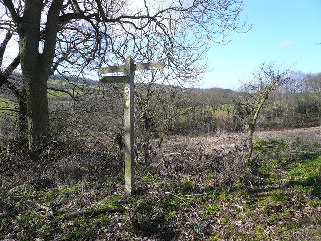 Geer Lane - Signpost