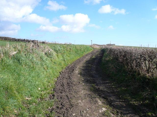 Geer Lane - Bridleway looking towards Footpath