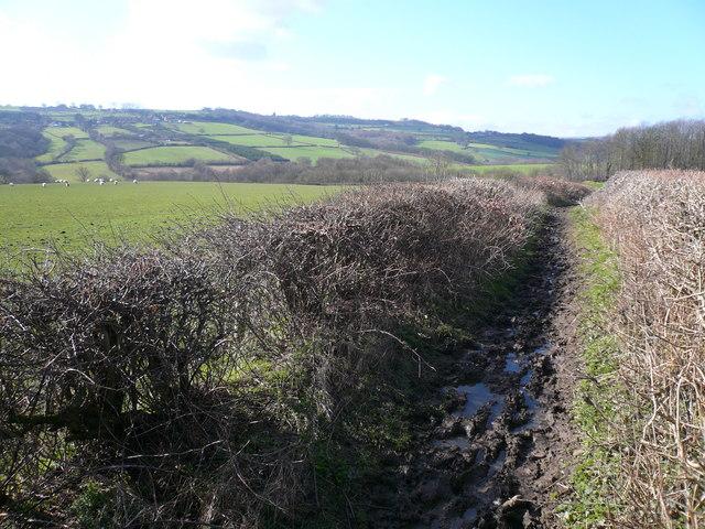 Geer Lane - Footpath