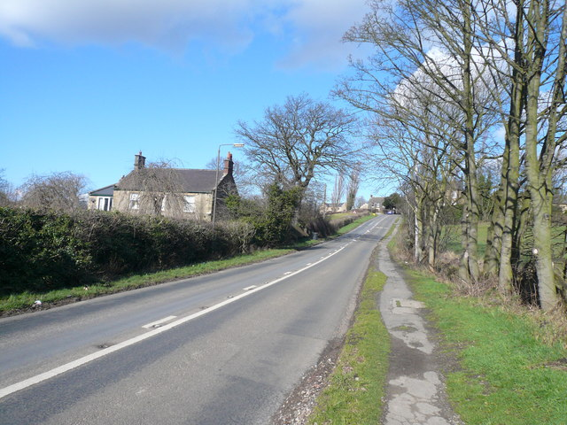 Ridgeway Moor - View towards Sloade Lane