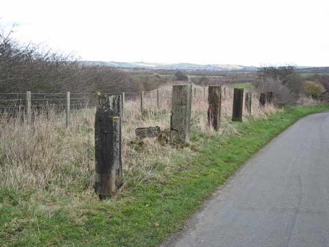 Posts alongside Mark's Lane, West Rainton
