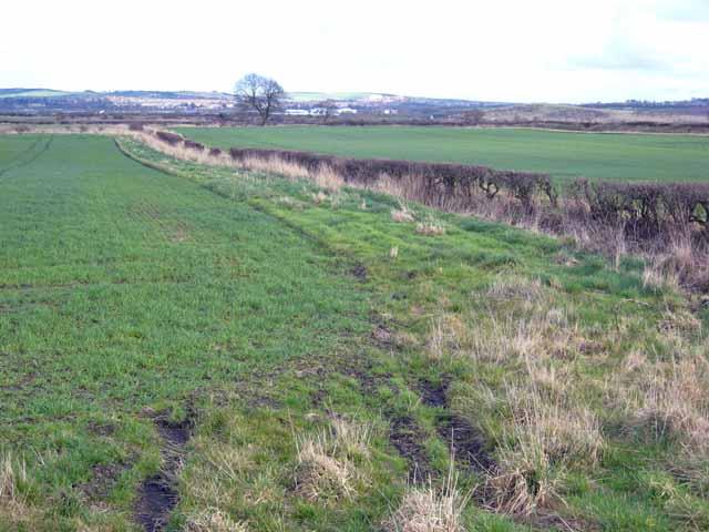 Fields at Lumley Moor Farm