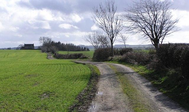 Lane to East Middleton