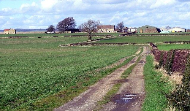 Bridleway : Greystone
