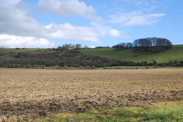 Manor Farm land